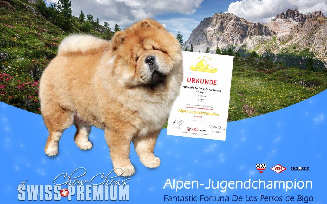 Alpen-Jugendchampion