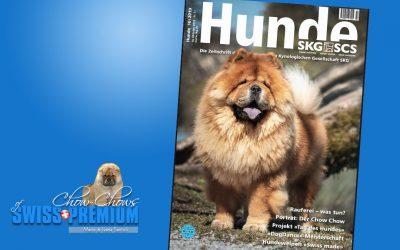 Fortuna ist auf dem Cover des HUNDE Magazin